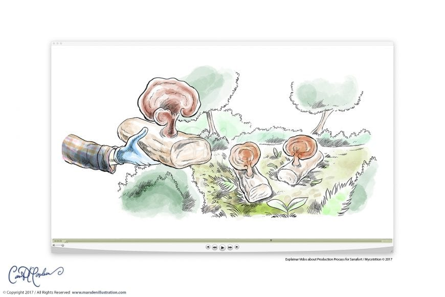 This image has an empty alt attribute; its file name is Foodproduction-Vid-Reishi-Marsden-870x580.jpg
